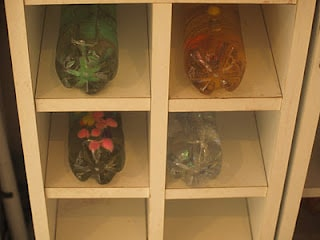 Sensory Bottles: The Seasons