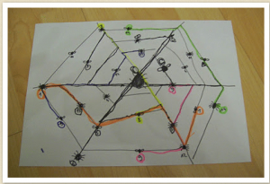 Spider Web maths