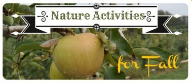 Sunday Showcase – Nature Activities for Autumn