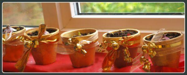 Handmade Christmas Gifts: Plant Pots