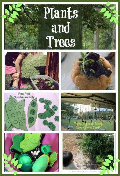 Trees and Plants - some fuin activities for kids exploring the natural world