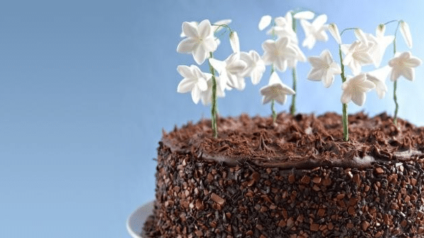 What Are The Best Ways To Make Use Of Flower And Modelling Paste In Baking?