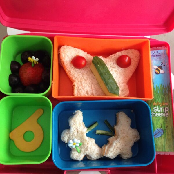 butterfly themed lunch box